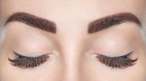 Διαδικασία επέκτασης Eyelash beautiful lashes long woman στοκ εικόνα