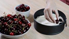 Διαδικασία μαγειρέματος Παραγωγή κανένας να ψήσει cheesecake κερασιών απόθεμα βίντεο