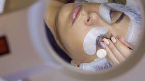 Διαδικασία της επέκτασης eyelash στο σαλόνι ομορφιάς απόθεμα βίντεο