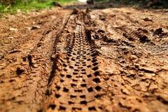Διαδρομές ροδών ποδηλάτων στο λασπώδες δικαίωμα ιχνών Διαδρομές ροδών στον υγρό λασπώδη δρόμο, αφηρημένο υπόβαθρο, υλικό σύστασης Στοκ Φωτογραφία