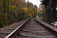Διαδρομές σιδηροδρόμου δίπλα στα vibrantly χρωματισμένα δέντρα το φθινόπωρο στοκ εικόνες