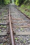 Διαδρομές σιδηροδρόμου που οδηγούν στη ζούγκλα Στοκ Εικόνες