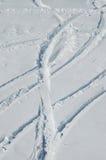 διαδρομές σνόουμπορντ σκι Στοκ φωτογραφία με δικαίωμα ελεύθερης χρήσης