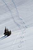 διαδρομές σνόουμπορντ χιονιού σκι ανασκόπησης Στοκ φωτογραφίες με δικαίωμα ελεύθερης χρήσης