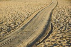 Διαδρομές στη χρυσή άμμο που οδηγεί στη θάλασσα στο ηλιοβασίλεμα Στοκ Εικόνες