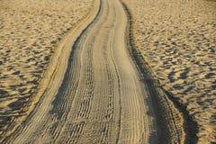 Διαδρομές στη χρυσή άμμο που οδηγεί στη θάλασσα στο ηλιοβασίλεμα Στοκ εικόνες με δικαίωμα ελεύθερης χρήσης