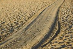 Διαδρομές στη χρυσή άμμο που οδηγεί στη θάλασσα στο ηλιοβασίλεμα Στοκ φωτογραφίες με δικαίωμα ελεύθερης χρήσης