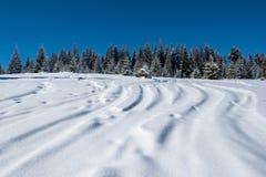 διαδρομές χιονιού σκι σκ στοκ φωτογραφίες με δικαίωμα ελεύθερης χρήσης