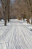 διαδρομές χιονιού Στοκ φωτογραφίες με δικαίωμα ελεύθερης χρήσης