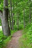 Διαδρομή πεζοπορίας του Castle Alatskivi Στοκ εικόνα με δικαίωμα ελεύθερης χρήσης