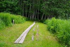 Διαδρομή πεζοπορίας του Castle Alatskivi Στοκ φωτογραφίες με δικαίωμα ελεύθερης χρήσης