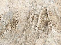 Διαδρομή ροδών στο χώμα ρύπου Στοκ εικόνα με δικαίωμα ελεύθερης χρήσης