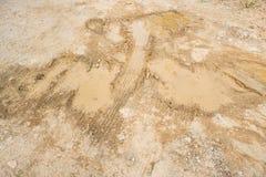 Διαδρομή ροδών στο χώμα ρύπου Στοκ φωτογραφίες με δικαίωμα ελεύθερης χρήσης