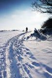 διαδρομή σκι Στοκ εικόνες με δικαίωμα ελεύθερης χρήσης
