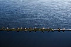 Διαιρεμένο νερό Στοκ φωτογραφία με δικαίωμα ελεύθερης χρήσης