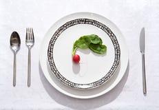 διαιτητικό γεύμα Στοκ φωτογραφία με δικαίωμα ελεύθερης χρήσης