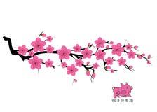 Διακλαδιμένος απεικόνιση δέντρων ανθών κερασιών της Ιαπωνίας Ιαπωνική κάρτα πρόσκλησης με τον ασιατικό ανθίζοντας κλάδο δαμάσκηνω διανυσματική απεικόνιση