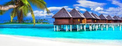 Διακοπές των Μαλδίβες πολυτέλειας - πανόραμα με τα μπανγκαλόου νερού στοκ εικόνες