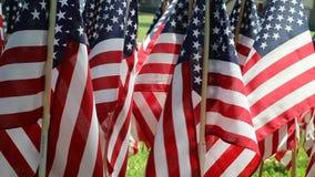 Διακοσμήσεις αμερικανικών σημαιών απόθεμα βίντεο