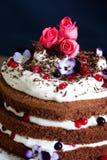 Διακοσμήσεις κέικ Στοκ φωτογραφίες με δικαίωμα ελεύθερης χρήσης