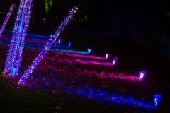 Διακοσμήσεις νύχτας στα Χριστούγεννα στους βασιλικούς κήπους Kew, Λονδίνο Στοκ Φωτογραφία