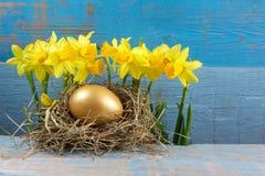 Διακοσμήσεις Πάσχας Αυγά στις φωλιές στο ξύλο στοκ εικόνες με δικαίωμα ελεύθερης χρήσης
