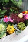 Διακοσμήσεις πεζουλιών πτώσης με το μέρος των λουλουδιών και άλλου ντεκόρ veg Στοκ Εικόνες