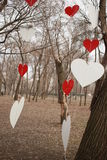 Διακοσμήσεις των κόκκινων και άσπρων καρδιών σε ένα δέντρο στο πάρκο Στοκ Εικόνες