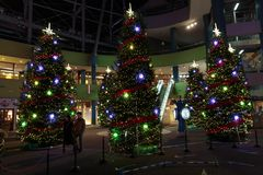 Διακοσμήσεις Χριστουγέννων του Τόκιο σε ένα Τόκιο στοκ φωτογραφίες με δικαίωμα ελεύθερης χρήσης