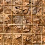 Διακοσμήστε τους τοίχους με τα ξηρά φύλλα και το υπόβαθρο στοκ φωτογραφία με δικαίωμα ελεύθερης χρήσης