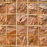 Διακοσμήστε τους τοίχους με τα ξηρά φύλλα και το υπόβαθρο στοκ φωτογραφίες