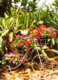 Διακοσμήστε το ποδήλατο. στοκ φωτογραφίες