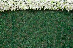 Διακοσμήστε το σκηνικό τοίχων του τεχνητού φύλλου και της άσπρης ορχιδέας για τη δεξίωση γάμου στοκ φωτογραφίες με δικαίωμα ελεύθερης χρήσης