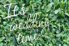 Διακοσμήστε το σκηνικό τοίχων του τεχνητού φύλλου και των λαμπρών επιστολών Είναι γαμήλιος χρόνος στοκ εικόνες με δικαίωμα ελεύθερης χρήσης