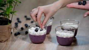 Διακοσμήστε το cotta Panna βακκινίων σε ένα γυαλί φιλμ μικρού μήκους