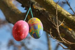 Διακοσμημένα αυγά Πάσχας στο δέντρο στοκ φωτογραφίες με δικαίωμα ελεύθερης χρήσης