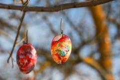 Διακοσμημένα αυγά Πάσχας στο δέντρο στοκ φωτογραφία