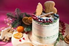 Διακοσμημένα κέικ Χριστουγέννων με το μελόψωμο Στοκ φωτογραφίες με δικαίωμα ελεύθερης χρήσης