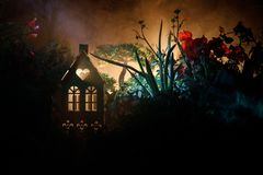 Διακοσμημένη φαντασία φωτογραφία Μικρό όμορφο σπίτι στη χλόη με το φως Παλαιό σπίτι στο δάσος τη νύχτα με το φεγγάρι Εκλεκτική εσ Στοκ Εικόνα
