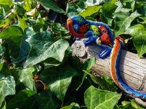 Διακοσμημένο με χάντρες Iguana στον κισσό Στοκ Φωτογραφίες