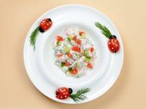 Διακοσμημένο πιάτο σαλάτας Στοκ Εικόνες