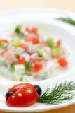 Διακοσμημένο πιάτο σαλάτας Στοκ Φωτογραφίες