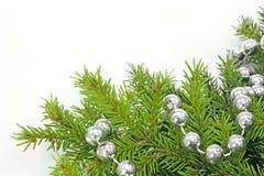 διακοσμημένο Χριστούγεννα δέντρο μεγάλων κλώνων Στοκ Εικόνα