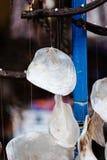 Διακοσμητικά άσπρα κοχύλια φυτωρίου χειροποίητο κοχύλι φυτωρίου για τη διακόσμηση Στοκ Φωτογραφίες
