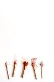 Διακοσμητικά καλλυντικά nude στην άσπρη τοπ άποψη υποβάθρου Στοκ φωτογραφίες με δικαίωμα ελεύθερης χρήσης