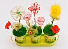 διακοσμητικά λουλούδια Στοκ φωτογραφίες με δικαίωμα ελεύθερης χρήσης