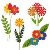 Διακοσμητικά λουλούδια Στοκ εικόνες με δικαίωμα ελεύθερης χρήσης