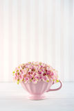 Διακοσμητικά ρόδινα λουλούδια hydrangea Στοκ Εικόνα