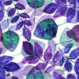 Διακοσμητικά φύλλα απεικόνισης Στοκ φωτογραφία με δικαίωμα ελεύθερης χρήσης
