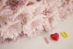 Διακοσμητικές επιστολές που διαμορφώνουν τις λέξεις ` Ι U ` αγάπης στοκ φωτογραφία με δικαίωμα ελεύθερης χρήσης